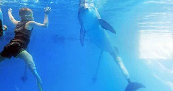 Double Amputee Boy Swims With Tailless Dolphin