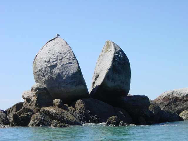 roca 8
