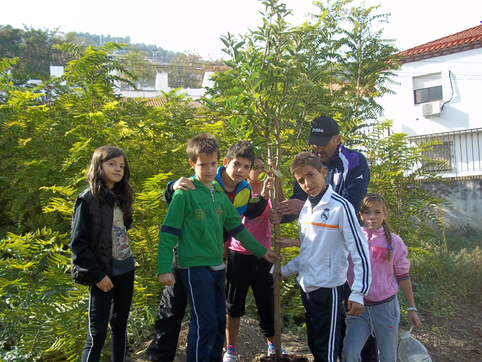 huerto-escolar-ceip-muñoz-garnica-jaen (2)