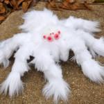 Peluda tarántula albina