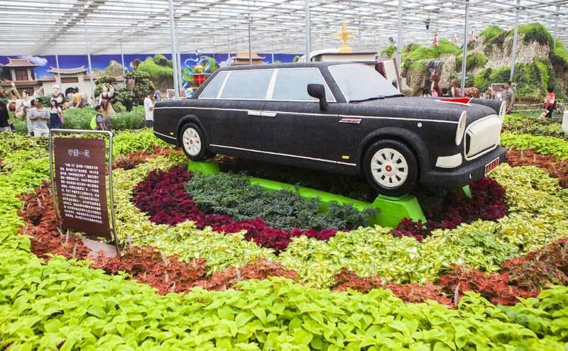 coche-de-legumbres (1)