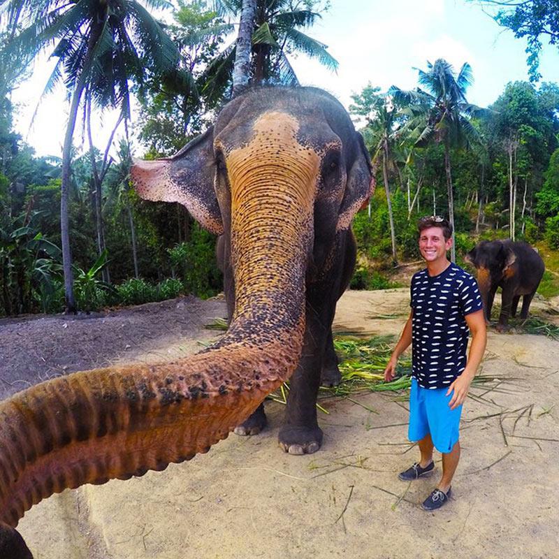 selfie-elefante-elphie