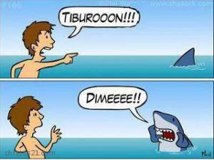 chiste-tiburon