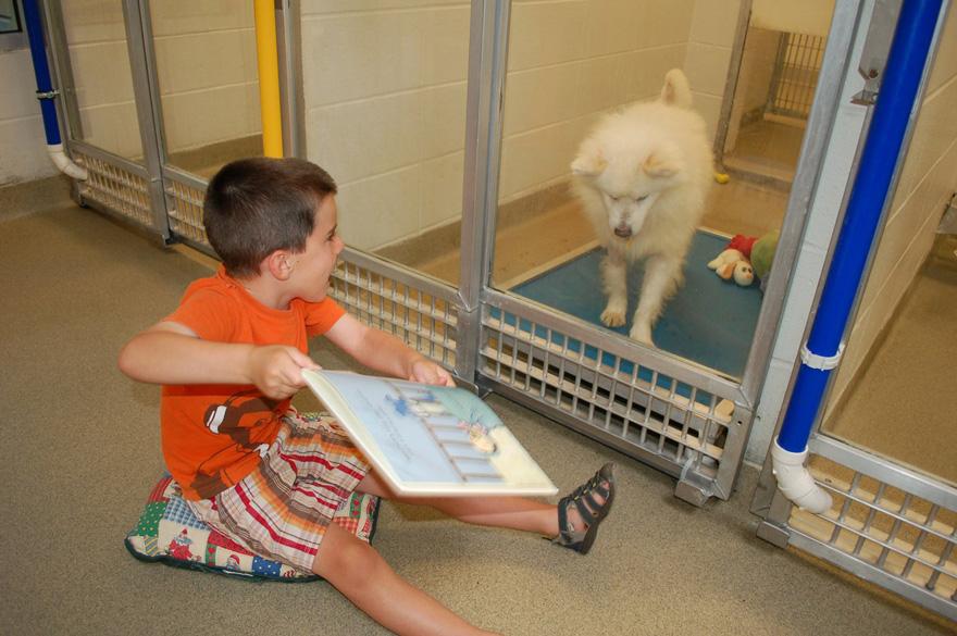 Niños leen a perros1