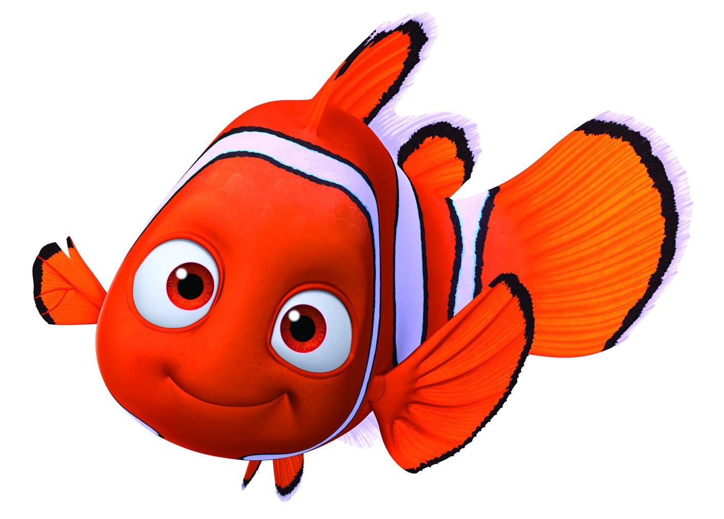 El pez payaso en peligro de extinci n por qu el gancho for Pesce nemo da colorare