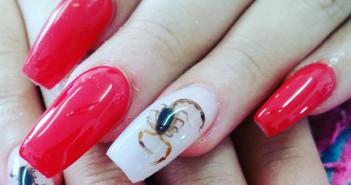 Alacran en las uñas