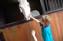 Se compra un pony vendiendo limonada
