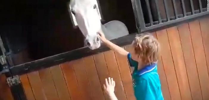 Consigue comprarse un pony vendiendo limonada