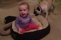 El perro que no quiere prestar su cama