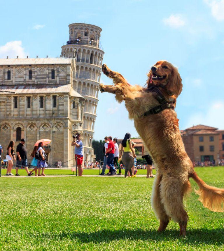 foto-torre-pisa-italia
