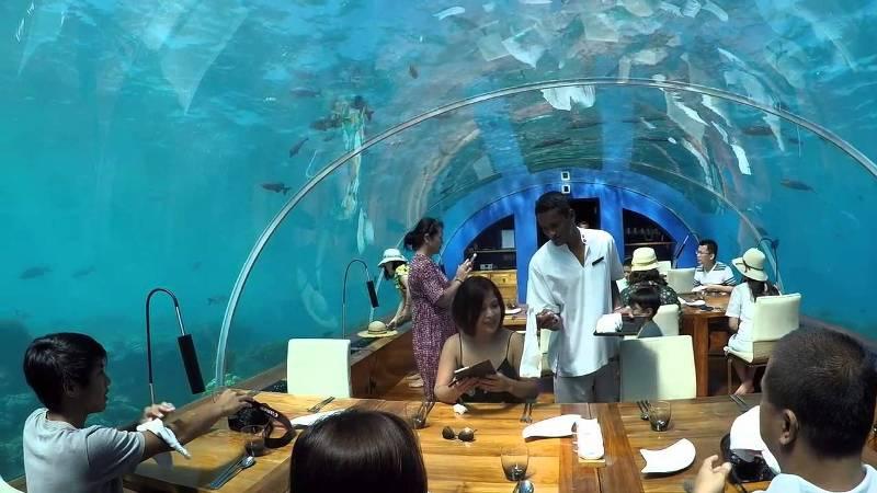 ithaa-maldivas-restaurante-bajo-el-mar-acuario-cupula