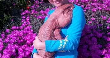 mcgyver-lagarto-colorado-gigante-san-diego-california