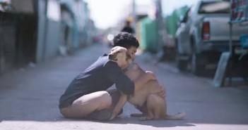 el-primer-abrazo-a-perros-callejeros