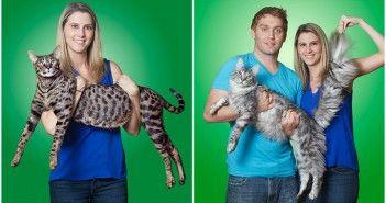 los-gatos-mas-alto-y-mas-largo-del-mundo-viven-juntos