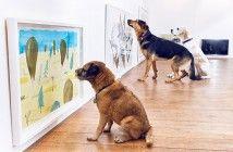 primer-museo-para-perros