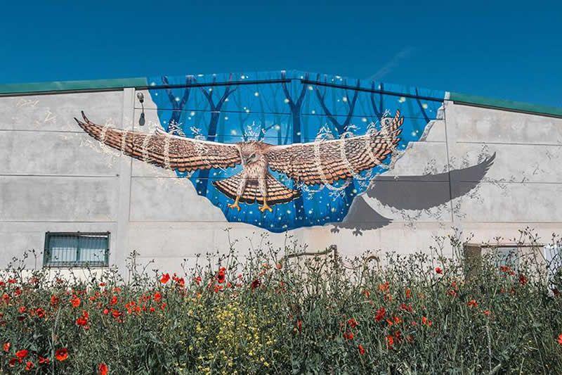 street-art-rural