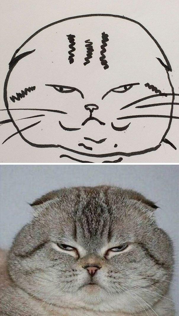 Dibujos-abstractos-y-divertidos-de-gatos