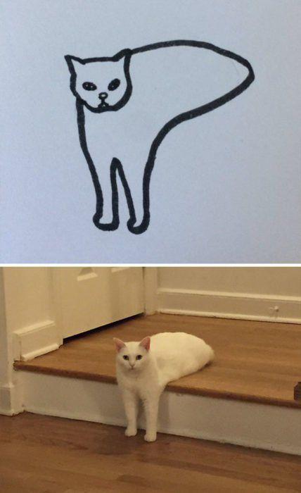 Dibujos-abstractos-y-divertidos-de-gatos(2)