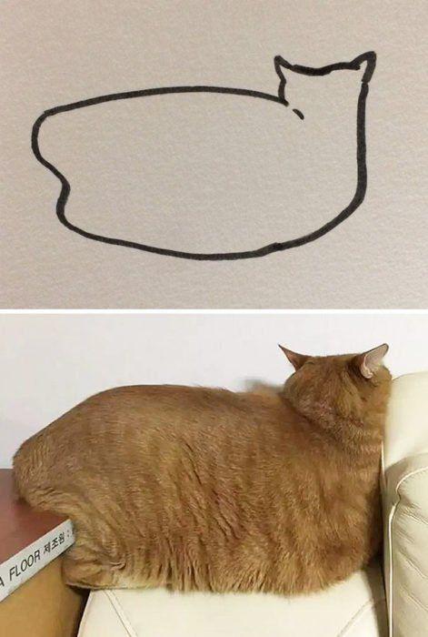 Dibujos-abstractos-y-divertidos-de-gatos(3)