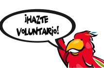 hazte-voluntario-2
