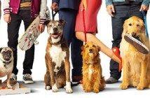 este viernes al cine Ilove dogs